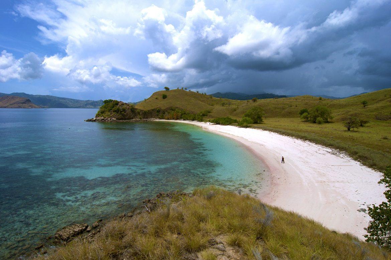 pulau komodo pantai pink nusa tenggara
